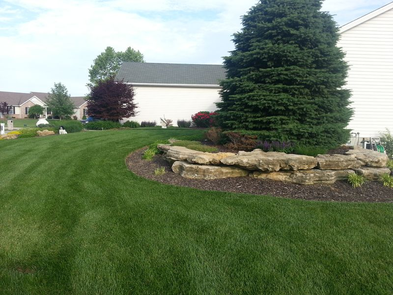 Lawn Care Simplified A Safe And Natural Approach Lawn
